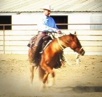 Spinning with the hackamore