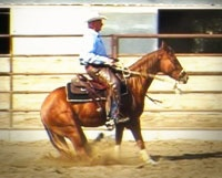 Sliding stop with the hackamore