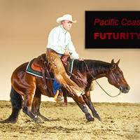 cutting horse videos